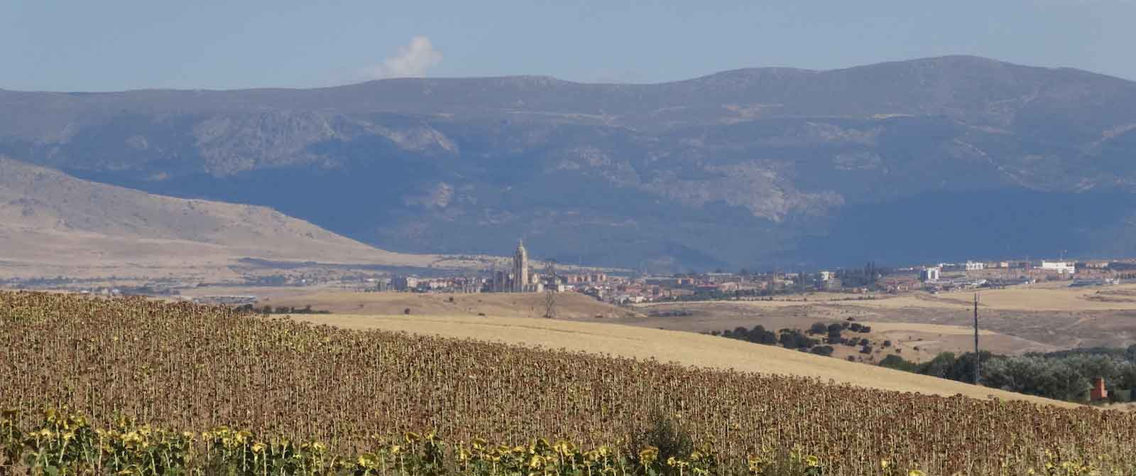 View of Segovia across sunflower fields in Castile y Leon, Spain