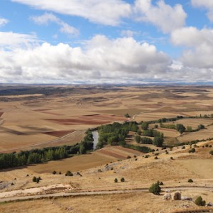 Fields in Castile and Leon