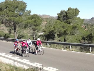 cycling holidays in spain link tours